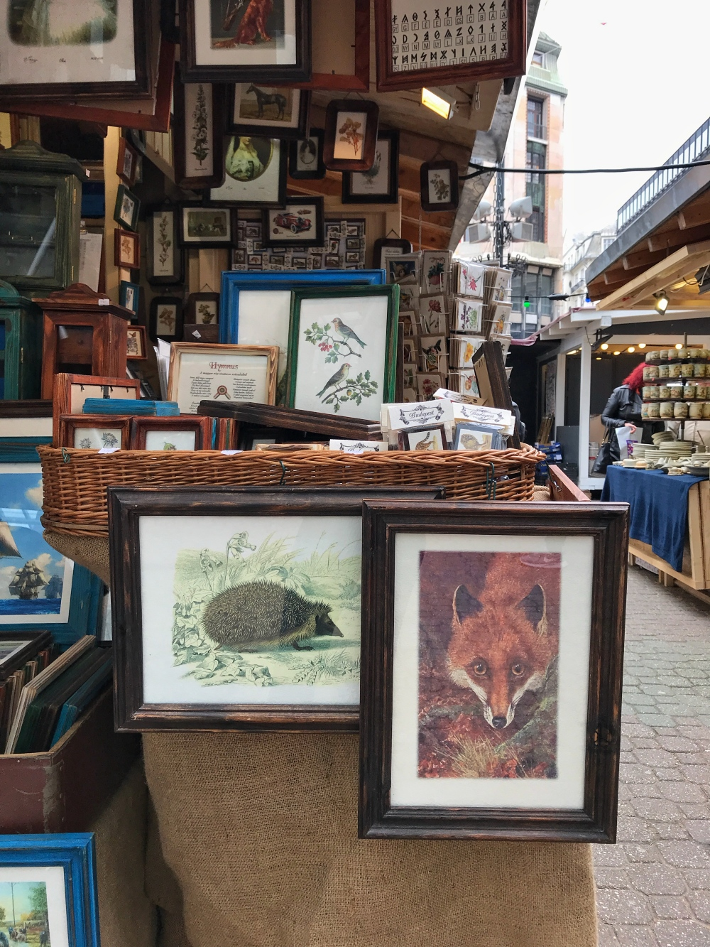 Fox and Porcupine in Budapest